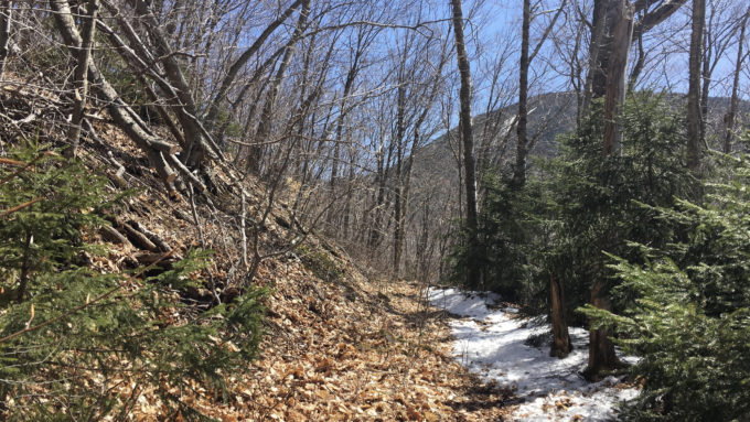 Scaur Ridge Trail and Mount Tripyramid